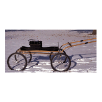 Royal-Classic-Fine-Harness-Buggy