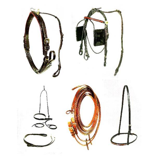 T15-18 Walsh 2001 FIne Harness Regular Wrap Strap [Desktop Resolution]