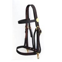 T7-23 Training Bridle with Caveson [Desktop Resolution]
